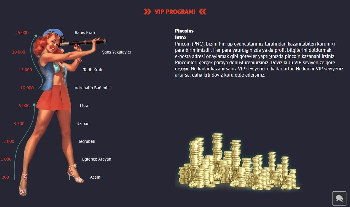 Pin Up Bet'te VIP programı